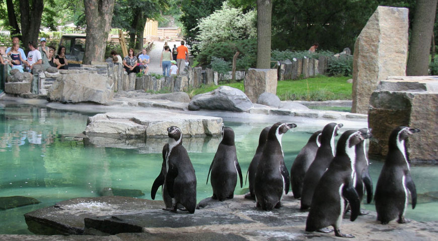 ZOO in Prague